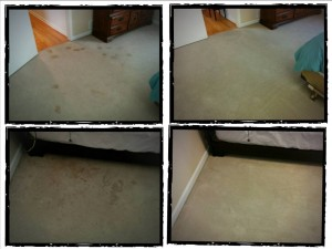 Can Clean It Green get that carpet clean? Pictures say a thousand words!