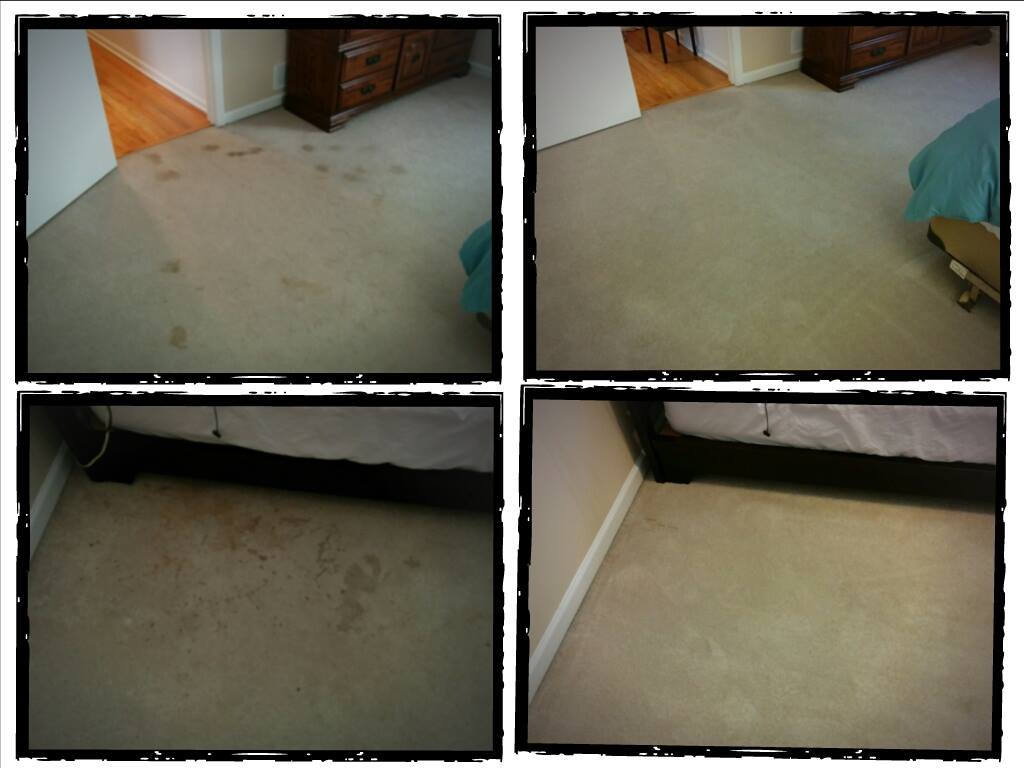 Can Clean It Green get that carpet clean? Pictures say a thousand words! Posted in Atlanta Carpet Cleaning Atlanta Ga